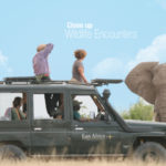 East Africa Safaris