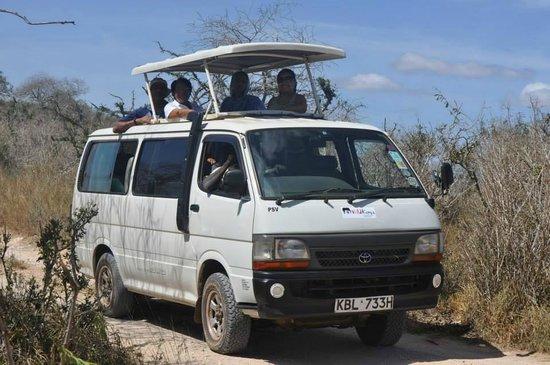 Safari Customized Tour van