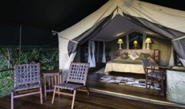 Flying Safaris Governors Camp