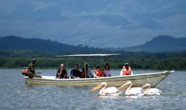 lake naivasha day tour
