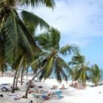 Christmas Packages 2019 2020 Top Mombasa Beach, Safaris