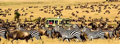 7-Day Masai Mara tour