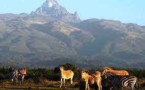 ABERDARE & MOUNT KENYA REGION