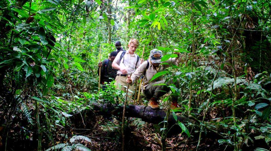 african safari tours holiday