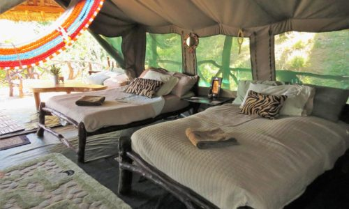 Sabache Camp samburu