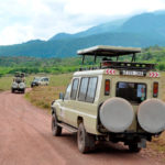 BUDGET SAFARI SERENGETI NGORONGORO