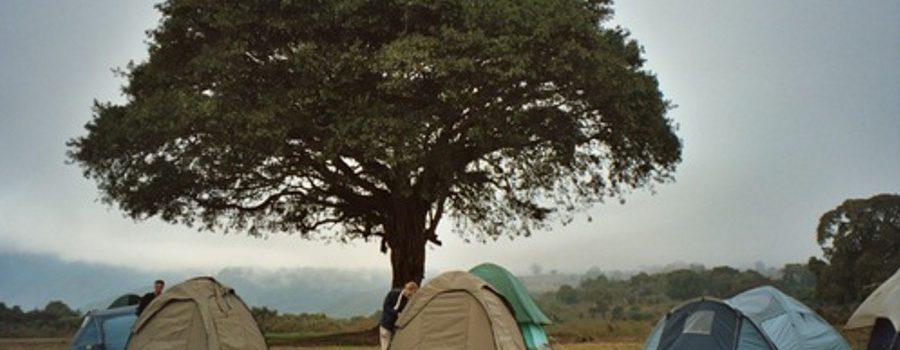 3days Serengeti Ngorongoro campingsafari