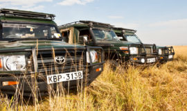 3Day Masai Mara group Guided Safari from Nairobi