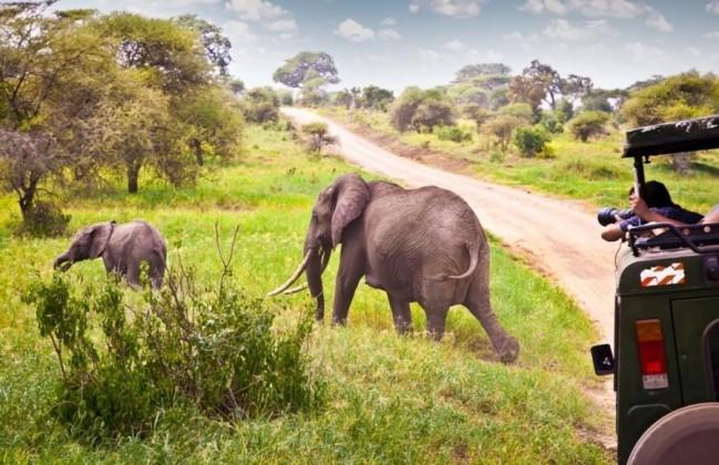 3 days masai mara safari offers
